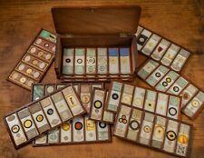 Antique mahogany box of 72 rare microscope slides
