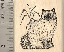 Ragdoll Cat Rubber Stamp G50012 WM