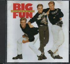 BIG FUN - A Pocketful Of Dreams - CD Album