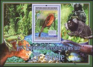 Mint S/S Fauna Bird Frog Monkeys 2011 from Guinea     avdpz