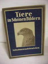 Blauen Bücher  Tiere in schönen Bildern , Bildband 1930
