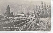 Camp Nelson in the Sierras near Porterville CA Postcard c1910