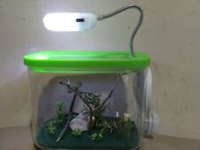 """New Luxury Led for jumping spider ,praying mantis or insect pet enclosure 5.5"""""""