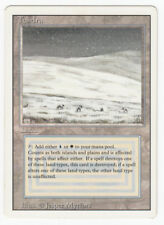 Tundra Magic english Revised Dual Land original Scan 18J102