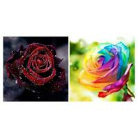 Rose 5D Part/Full Drill DIY Diamond Painting Rhinestone Cross Stitch Home Decor