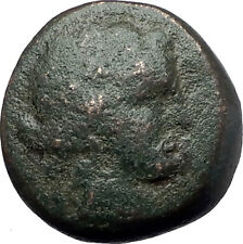 Maroneia in Thrace 148BC Authentic Ancient Greek Coin Dionysus Wine God i61533
