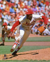 "St Louis Cardinals BOB GIBSON Glossy 8""x10"" Photo Baseball Print Poster"