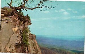 Vintage Postcard - Caesar's Head In Blue Ridge Mountains Greenville SC #5218
