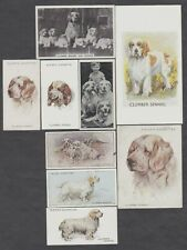 9 Different Vintage CLUMBER SPANIEL Tobacco/Cig/Tea Dog Cards