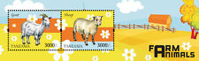 Tanzania-2014- Farm Animals-Sheep