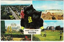 NAIRN - Lucky Black Cats - #PLC35952 - 1980 used postcard