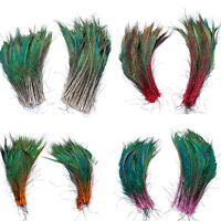 30-35 cm/12-14 inches 10pcs Beautiful Natural Peacock Feathers High Quality