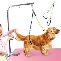 For Pet Haunch Holder Dog Grooming for Table No-Sit Restraint Harness Leash Loop