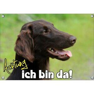 Hundeschild - Flat Coated Retriever - wetterbeständtige Metallplatte mit Fotodru