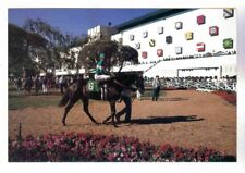 HOLLYWOOD PARK PADDOCK  AND SADDLING RING,CLUBHOUSE VIEW POSTCARD