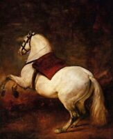 Horse Painting Art CANVAS Print Reproduction White Horse Diego Velazquez 8x10
