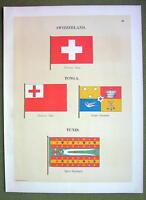 FLAGS TUNIS Tonga Switzerland Standard Naval Marine - 1899 Color Antique Print