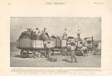 1900 ANTIQUE PRINT -  BOER WAR- HOW THE BAGGAGE OF THE ARMY IS CARRIED