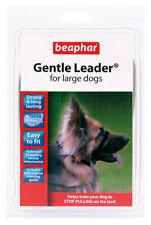 Articles gris pour chiens grands en nylon pour chien