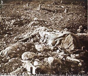 Douaumont cadavres Première Guerre mondiale 1914-18 WW1 Plaque Stereo Vintage