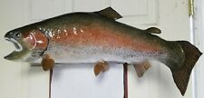 27 00004000 4; Rainbow Trout Taxidermy Mount Fish Real Skin Mount