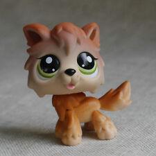 Brown Wolf Dog Pubby #2141 Action Figure LPS mini LITTLEST PET SHOP 2 inch