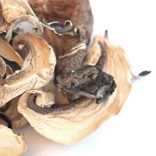 Stir-Fry Mushroom Blend | Bulk | Spice Jungle