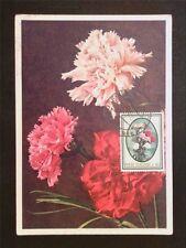 ITALIA MK 1966 FLORA BLUMEN NELKE MAXIMUMKARTE CARTE MAXIMUM CARD MC CM c7906