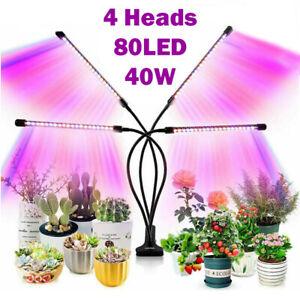 4 Head 80 LED Grow Light Growing Veg Flower Indoor Clip 40W Plant Lamp