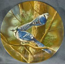The Blue Jay Collector Plate 2nd Birds of Your Garden Kevin Daniel 1985 Knowles
