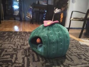 """Green, 10"""", Cactus Flower Cat Bed, (Great Condition)"""