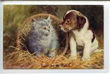 (Lp248-100)  Puppy Dog & Cat, Can't We Be Pals ?, Postally Unused, G
