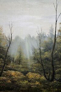 Stunning original oil painting on board - Morning in the Forest