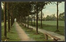 C1910 View of Lovers Lane, Wingham, Ontario