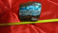QLD BOULDER OPAL - POLISHED  MULTI  COLOR  CLASSY PAPERWEIGHT (z2)