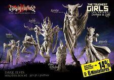Raging Heroes Dark Elves Heroines Box Set 28mm - Standard Bearers - Warhammer