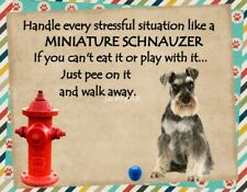 Miniature Schnauzer Stressful Situation Magnet