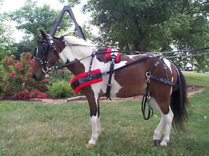 BIOTHANE  MINI AND SMALL PONY HARNESS, AMISH MADE WITH STAINLESS HARDWARE, NICE!