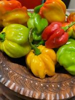 .5 Lb 100% Organic Whole Jamaican Scotch Bonnet Pepper