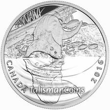 Canada 2016 Reflections of Wildlife #2 River Otter $10 Pure Silver Proof