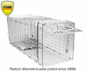 Ebays TOP SELLING Possum Trap Pestrol  Large. Cats dogs foxes possum cage