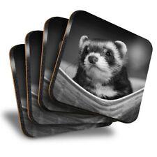 Set of 4 Square Coasters - Bw - Ferret Hammock Pet Rodent Animal #37246