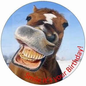 Funny Horse Happy Birthday Cake Topper With Your Own Personalised Message Words