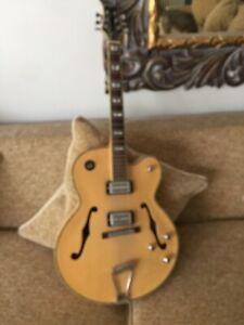 Peavey Rockingham guitar 78