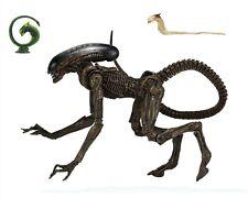 Alien 3 - 7