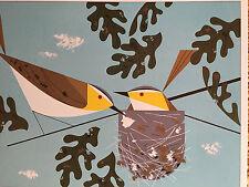 CHARLEY CHARLES HARPER Red-eyed Vireos Vireo New Art  print  bird nest