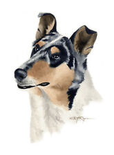 Smooth Collie Watercolor 8 x 10 Art Print Dog by Artist Djr