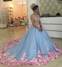 Baby Blue Floral Masquerade Ball Gowns 2017 Cathedral Train Quinceanera Dress