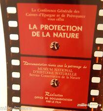 FILM Images Fixes DOCUMENTAIRE : PROTECTION de la NATURE - CAISSES D'EPARGNE