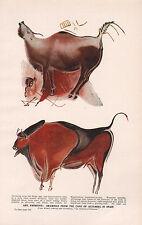 1947 DOUBLE-SIDED PRINT PRIMITIVE ART CAVE PAINTINGS ALTAMIRA SPAIN PREHISTORIC